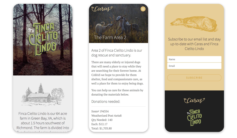 Caras mobile-first website 2