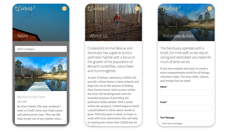Caras mobile-first website 3